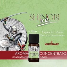 Vaporart - SHINOBI ICE aroma 10ml